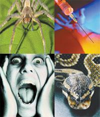 Fobie: sintomi e trattamento
