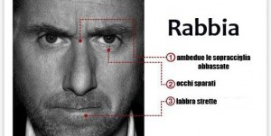 rabbia-524x264